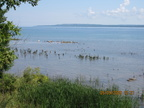 Manitoulin Island 2009 004